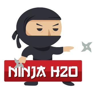 Initiation Juin 2019 - Ninja